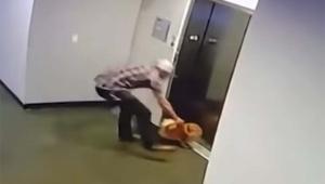 あと数秒で命を失うポメラニアンを救った男の動画 / 世界中の人たちが絶賛