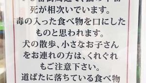 【緊急事態】石垣島で猫の不審な絶命が相次ぐ / コンビニでも注意喚起の張り紙を掲示