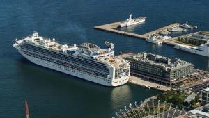 コロナウイルス感染者を乗せたクルーズ船が横浜入港 / 羽鳥慎一アナが懸念「着岸し続けるってことはないですもんね?」