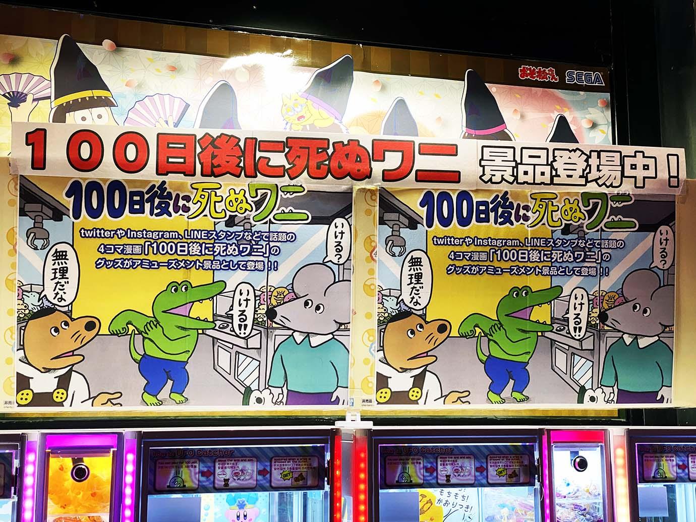 100nichigo-wani1