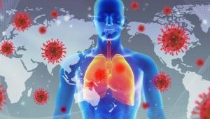 【話題】日本初のオンライン診療のコロナウイルス抗体検査開始 / 単に心配な人でも検査可能「南青山エイベックスクリニック」