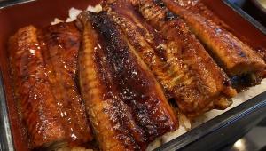 【最強うなぎ伝説】吉野家の鰻重が激しくコスパ良すぎてウマイ件 / 土用の丑の日に実際に食べて確かめた「ウナギ激ウマ」