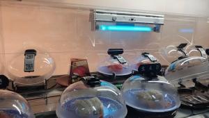 コロナ対策!最先端のくら寿司がグランドオープン