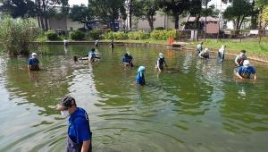 【衝撃】足立区の池にカメを捨てる無法者が出現 / 猛暑のなか危険亀を大捜索「絶対に許せない」