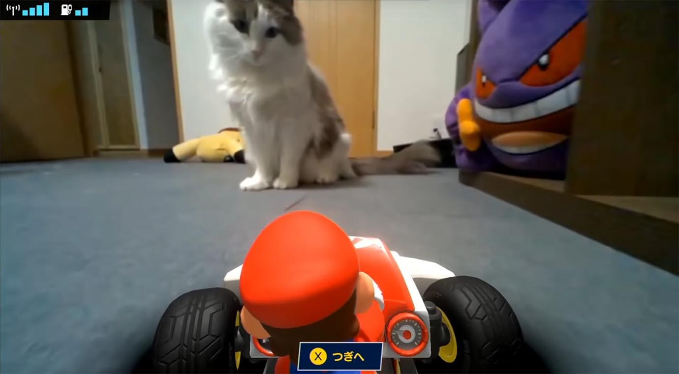 animal-cruelty-in-mario-kart-news1