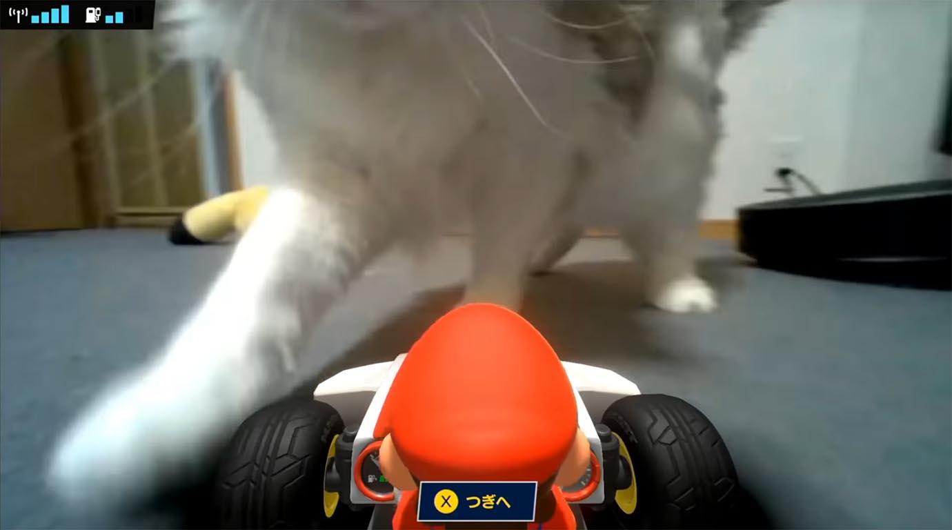 animal-cruelty-in-mario-kart-news2