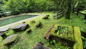【伝説】秘境すぎる秘湯「北温泉旅館」に泊まる / 秘湯レベル最強クラスの温泉プールで癒やされる