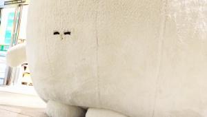 【話題】東京駅のマスコットガールふくらむちゃん引退 / 現在は有休消化中「ヤキを入れられたこともあったなー」