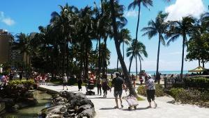 【衝撃】人気プロレスラー・菊タローさんがハワイで差別的拘束で刑務所へ / そして強制送還「こんな事で夢を潰されてたまるか」