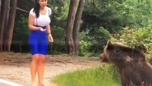 【衝撃動画】野生クマの真横で記念撮影しようとした女性の末路 / 超接近して熊激怒 → 襲われる