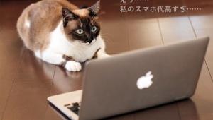【話題】日本通信SIMのスマホプランが激安すぎて公式Twitterも「頭おかしい」と言ってしまうレベル