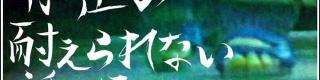 【衝撃】元少年A・酒鬼薔薇聖斗の公式サイトが消滅間近だと判明 / タイムリミットまで時間なし